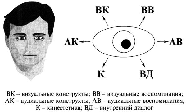 Глаза зеркало души. Как распознать ложь
